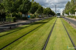 Olivier-Guitard_Nantes-Tramway