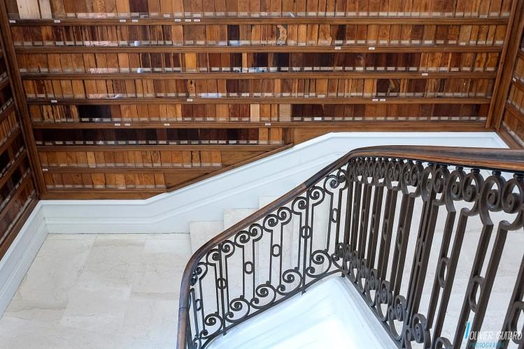 escalier_museum-nantes