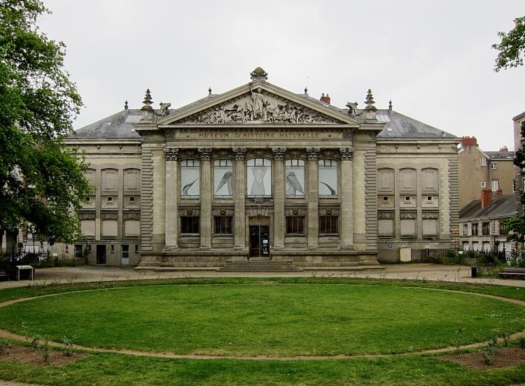 Nantes_museum_histoire_naturelle