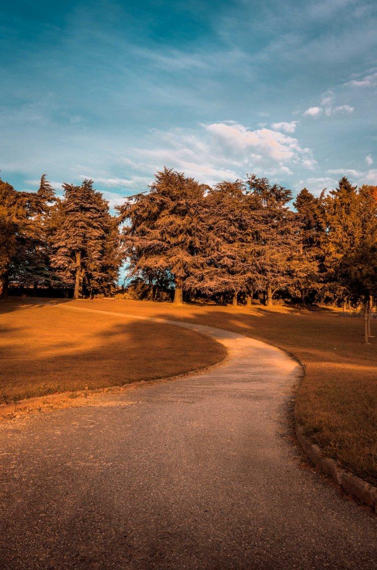 Parc de Procé_4_Alexandre-Thebaud